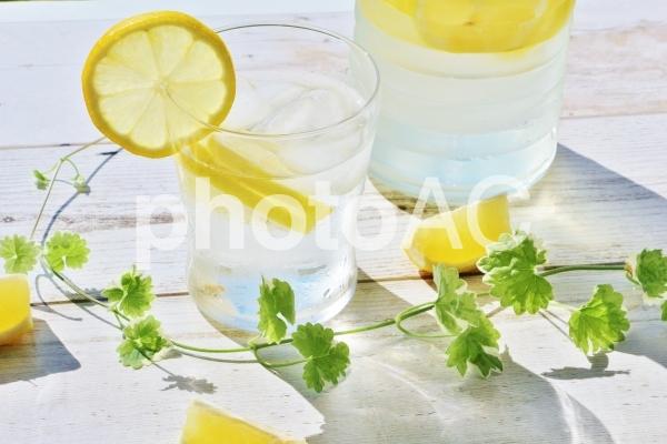 レモン水の写真
