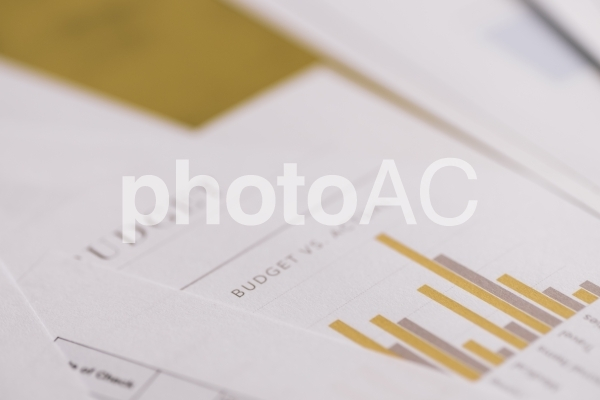 チャートグラフ・棒グラフ9の写真