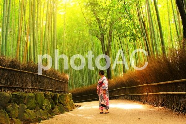 京都 嵐山の写真
