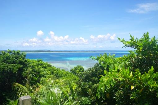 大神島 宮古島 海岸 海 景色 空 青 緑 ブルー グリーン 植物 草木 葉 景観 展望 眺め 夏