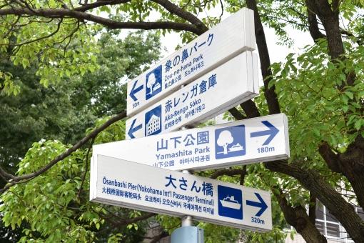 道路標識 やじるし 矢印 道路 標識 右 真っ直ぐ まっすぐ 曲がる 進行方向 気持ちいい 明るい 未来 向かう 交通ルール 交通 ルール 守る 日本 japan 案内標識 警告 規制 地理 情報 警戒 安全 目的地 お知らせ 利用 道案内 案内 道 見上げる カッコイイ かっこいい ポール 白 ホワイト 青 ブルー あお しろ 交通標識 曲がってる 止まる 象の鼻パーク 赤レンガ倉庫 山下公園 大桟橋 大さん橋 木 木々 緑 グリーン 葉っぱ 自然 自然と調和 みなとみらい 桜木町 中区 mm21 地区 21 公園 山下 yokohama 神奈川県 横浜みなとみらい21 都会