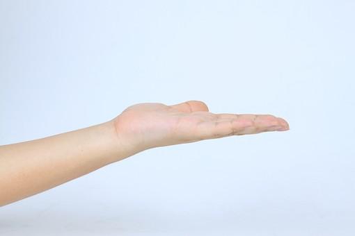 手 ハンド ハンドパーツ ボディパーツ 人物 指 手元 手首 ジェスチャー 身振り 肌 人肌 腕 パーツ 部位 片手 片腕 白バック 白背景 コピースペース テキストスペース 左手 どうぞ 手差し 指す 案内 こちらへ