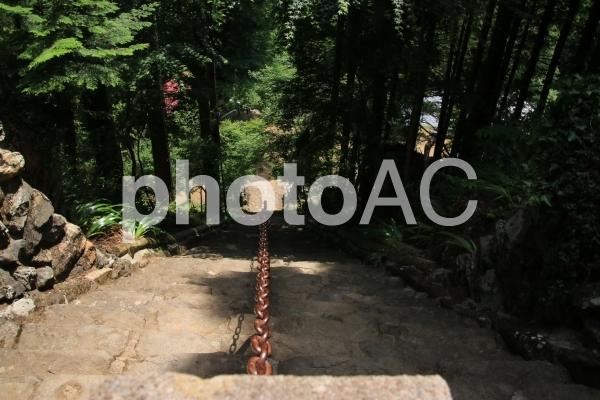 高山不動の参道の写真