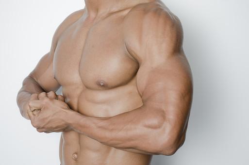 筋肉 マッスル ボディビルダー ボディ 体 人間 人体 男性 男 漢 強い 屈強 頑丈 スポーツ 筋力 筋トレ ボクシング ボクサー トレーニング スポーツジム アスリート ストイック ビルドアップ 憧れ ダイエット お腹 腹 腹筋 割れる 腕 ポーズ
