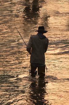 川釣り 夕方 夕日 黄昏 逆光 シルエット 川 河 川の中 河の中 ハット 帽子 立つ 水面 釣り フィッシング フライフィッシング アウトドア 魚 釣り人 フィッシャーマン 人物 男性 外国人 白人  ポートレート 景色 風景 自然 趣味 ホビー 後ろ姿 釣り竿 ロッド リール 投げ釣り キャスティング 歩く 移動