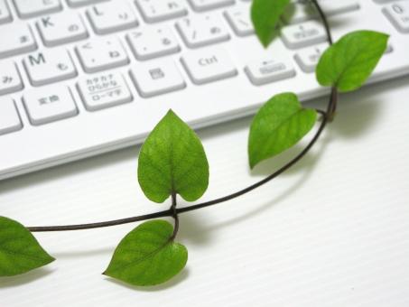 葉っぱ キーボード 白 ホワイト グリーン 緑 清潔 クリーン 環境 エコ ビジネス パソコン データ 入力 オフィス 植物 自然 PC