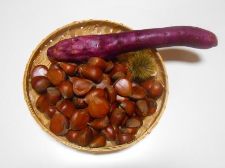 栗 くり クリ サツマイモ 薩摩芋 さつま芋 さつまいも いが栗 イガ栗 秋 秋の味覚 栗の実 chestnut autumn 料理 製菓 おやつ 甘味 食べ物 栗ごはん 焼き芋 ふかし芋