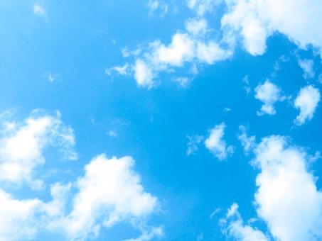 空6の写真