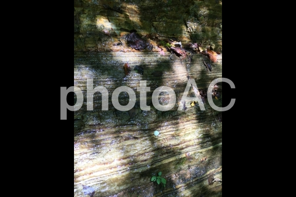 奥の細道 濡れた岩壁 0823の写真