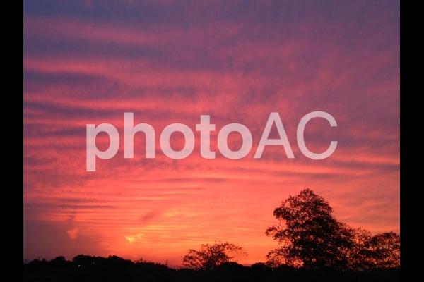 夕映え 茜空の写真