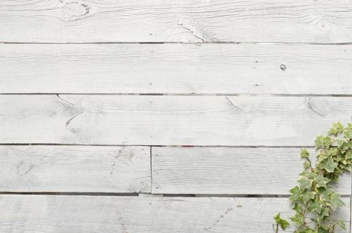 白 ホワイト 板 木 背景 素材 ペイント 塗装 文字スペース テキストスペース コピースペース デザイン素材 バック バックグラウンド カフェ レストラン ショップ 住宅 インテリア 木目 天然 ナチュラル 自然 植物 緑 DIY 壁 カベ テクスチャ