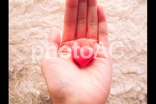ハートを持つ手の写真