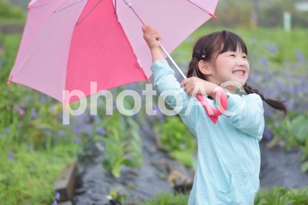傘をさす子供の写真