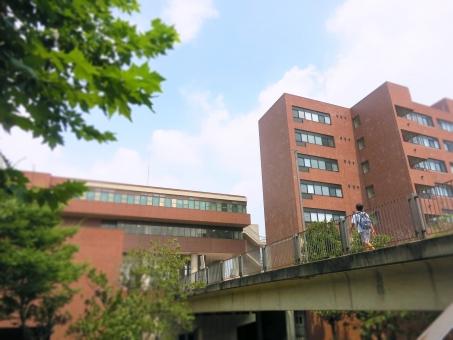 キャンパス 筑波大学 つくば 筑波 大学 歩道橋 校舎 入試 茨城 受験 15 国立
