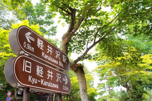 風景 自然 景色 緑 緑色 グリーン 木 森林 軽井沢 観光地 観光 避暑 避暑地 夏 看板