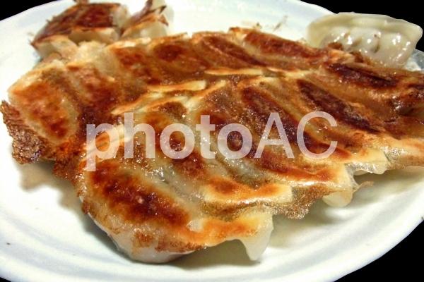 焼き餃子 #6の写真