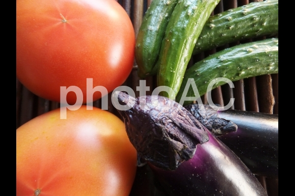 野菜 2の写真