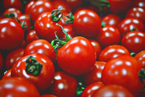 野菜 トマト とまと ミニトマト ミニとまと プチトマト プチとまと チェリートマト ビタミン 食材 新鮮 素材 背景  食べ物 健康 フレッシュ 自然 ダイエット ベジタブル 夏野菜 リコピン 食品 赤 果実 緑黄色野菜 唐柿 とうし 赤茄子 あかなす 蕃茄 ばんか 小金瓜 こがねうり