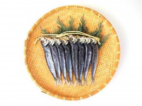 いわし イワシ 鰯 魚 水産物 漁業 水産 旬 さかな 節分 アンチョビ 焼き魚 焼魚 調理 回遊魚 食物 海水魚 海 海産 dha epa 鰯の頭も信心から 刺身 塩焼き てんぷら 食材 天婦羅 天ぷら アンチョビー 漁獲高 漁獲量 銚子 漁師 漁 大漁 飼料 肥料 餌 エサ タンパク質 たんぱく質 カルシウム 動物性蛋白質