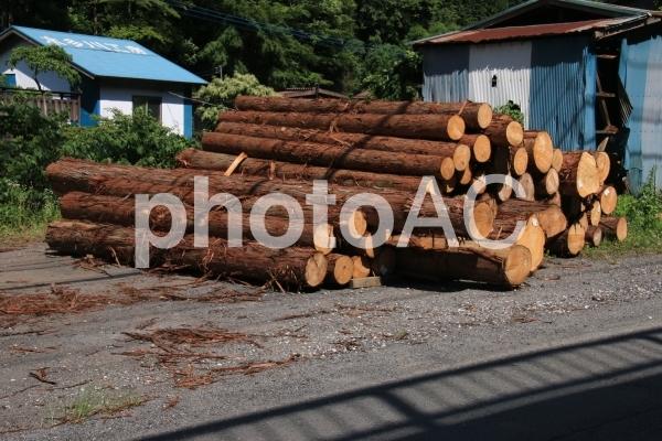 木材の写真