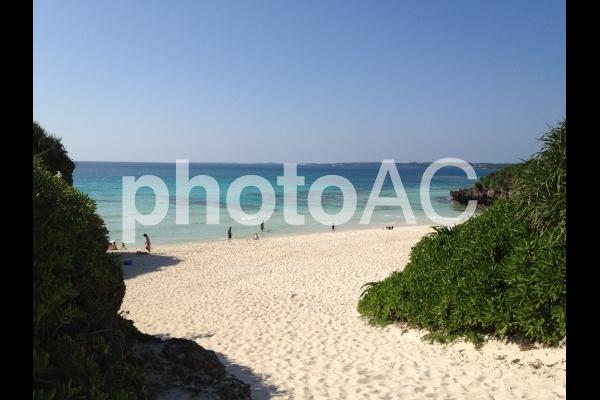 沖縄県 サメが近寄ってくるビーチの写真