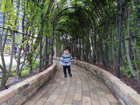 トンネル 緑のトンネル 子ども 子供 こども トトロ ジブリ レンガ 煉瓦 ブリック 蔦 つる 弦 ツル 植物 グリーン 緑 洞窟