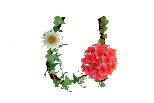 アルファベット ローマ字 英文字 文字 植物 花 グリーン カランコエ アイビー テクスチャ 素材