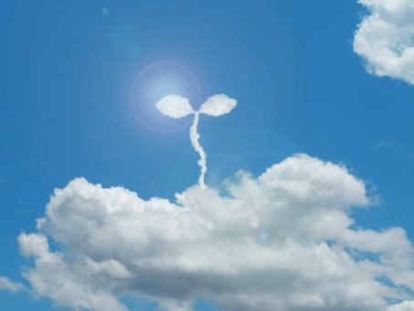 空 雲 ECO エコ eco エコロジー 環境 環境問題 社会 社会問題 リサイクル 節電 節約 省エネ 双葉 旅立ち 誕生 兆し 希望 未来 自然 自然保護 成長 福祉 出発 エネルギー エネルギー問題 ecology economy バナー