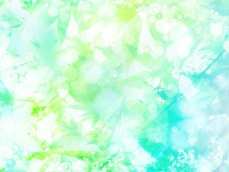 夏のきらめきグリーンの写真