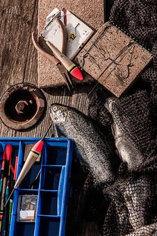 川釣り 河 川 桟橋 木 釣り フィッシング フライフィッシング 魚 釣り人 フィッシャーマン 趣味 ホビー 釣った魚 釣果 獲物 ニジマス 川魚 浮き 釣り道具 擬似餌 ルアー ペンチ ニッパー 網 アップ 接写 投げ釣り キャスティング