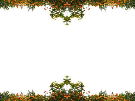 背景 フレーム バックグラウンド 素材 枠 写真 加工 CG グラフィック 枠組み 背景素材 フレーム素材 テンプレート フォトフレーム ひな型 白 背景白 下寄り 空白 スペース 花 花びら オレンジ色 橙色 葉 葉っぱ 緑 植物 自然 風景 上下 対称 シンメトリ
