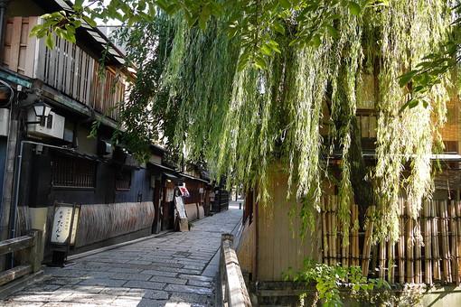 京都 きょうと 古都 日本 京都府 京都市 関西 歴史 旅行 風情 情緒 景色 風景 世界遺産 ユネスコ 世界文化遺産 町並み 街並 日本家屋 伝統 歴史 旅行 観光 和 町家 古い 建物 家 石畳 道 自然