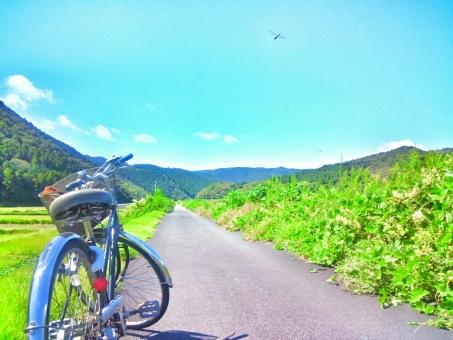 晴れ 晴天 青空 青い ブルー 空 そら スカイ スカイブルー 水色 みずいろ 雲 太陽 ひかり 陽射し 日光 きらきら 自然 しぜん 風景 景色 田舎 のどか ゆっくり 癒し 風 さわやか 気持ちいい リフレッシュ さんぽ 散歩 サイクリング 自転車 爽快 走る 休み 休日 たのしい エンジョイ ハッピー 山 森 林 木 草 みどり 緑 グリーン リラックス 道 空気 きれい 綺麗 美しい ビューティフル 赤とんぼ 生き物 動物 かわいい