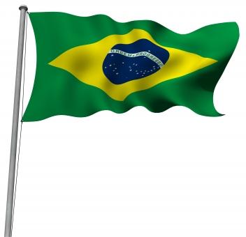 ブラジル国旗イラスト/無料イラストなら「イラストAC」