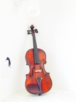 ヴァイオリン バイオリン 音響 アンティーク アート 芸術 バロック 美しい ブリッジ 古典 古典的な 茶色 フィドル 楽器 弦 弦楽器 音楽 音楽的 ネック 古い ペグ スクロール ヴィンテージ 白 木 木工 ストリングス 楽譜 弓 演奏会 練習 弾く 演奏