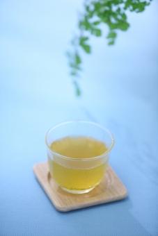 お茶 冷たい 飲み物 冷茶 日本茶 ドリンク 飲料 冷たいお茶 夏 真夏 涼しい 和 和のイメージ グラス ブルー 青 夏イメージ サマー 初夏 休憩 一息 素材 盛夏 ガラス コップ 和風 グリーン 緑 観葉植物 植物