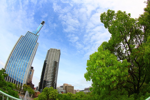 自然 風景 景色 スナップ 旅行 スポット 観光 交通 道 道路 立体 都会 ビル 青空 空 晴れ 見上げる のどか 都会 田舎 街路樹 高層ビル 植物 木 癒し
