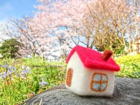 マイホーム 家 家庭 家族 ファミリー 新生活 新居 引っ越し 一軒家 一戸建て 春 桜 青空 日差し 明るい 花 自然 風景 景色 しあわせ 幸せ 人生 小物 季節 ほのぼの アート サクラ お花見 植物 草木