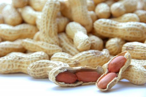 ピーナツ ピーナッツ 豆 健康 食べ物 お菓子 節分 落花生 菓子 種子 アレルギー 種 ジャム 原料 材料 食材 ナッツ