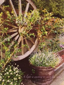 カントリー 植物 ガーデニング 車輪 風景