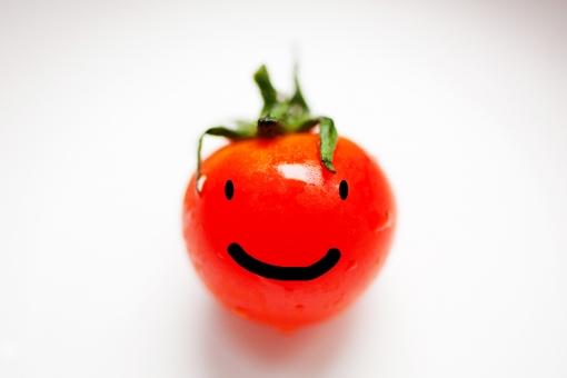 出荷 作業 農家 農業 おいしい 美味しい 北海道 日本 植物 食物 夏野菜 トマト 赤 赤色 夏 健康 野菜 果物 新鮮 フレッシュ 食べ物 リコピン ビビット 完熟トマト 水耕栽培 接写 マクロ マクロ撮影 美容 1個 1 表情 顔 面 気持ち 気持 きもち 心 思い 嬉しい うれしい 楽しい たのしい 気持いい 笑顔 わらい 笑い 笑 気分がいい