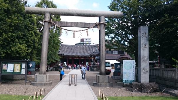浅草神社 浅草 台東区 東京都 神社 神社仏閣 鳥居 パワースポット 石鳥居