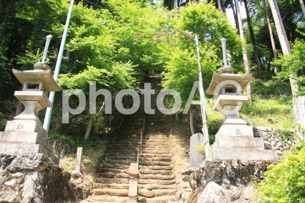 高山不動の参道2の写真