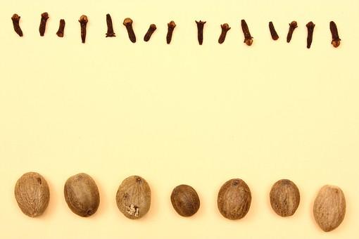 スパイス ハーブ グローブ ナツメグ 実 調味料 香辛料 香料 食べ物 食材 乾燥 フレーム 余白 コピースペース テキストスペース 背景 背景素材 バックグラウンド 枠 囲み枠 シンプル 並べる 黄 赤 茶 シンプル 植物