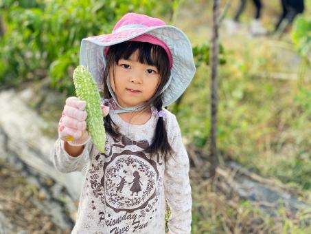 ゴーヤを収穫した女の子_01の写真