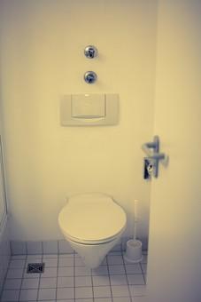 トイレ トイレット 厠 かわや 手洗 御手洗い 手洗い場 洗面所 手洗場 手洗い 隠所 便所 化粧室 お手洗い 御手水 閑所 排泄 室内 屋内 金具 水回り 建築 内装 空間 生活 ライフスタイル 家 個室 便器