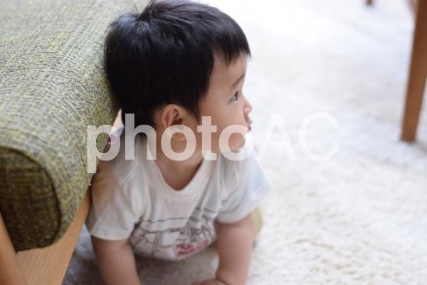 赤ちゃんの横顔の写真