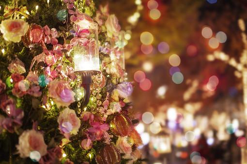 プレゼント 花 冬 光 クリスマス ライト イメージ ライトアップ クリスマスツリー オーナメント クリスマスオーナメント きらきら キラキラ クリスマスプレゼント パーティー 12月 CG 合成 Xmas コンピュータグラフィックス クリスマスイブ 聖夜 クリスマスパーティー オーナメントボール コンピュータグラフィック CG15 CG合成