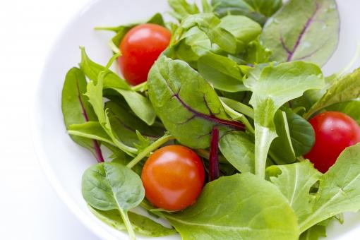 ベビーリーフ 葉 野菜 トマト 食べ物 皿 健康 ヘルシー ダイエット 美容 フレッシュ