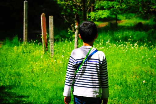 人物 自然 男の子 ー ハイキングで自然に中を歩く男の子の写真